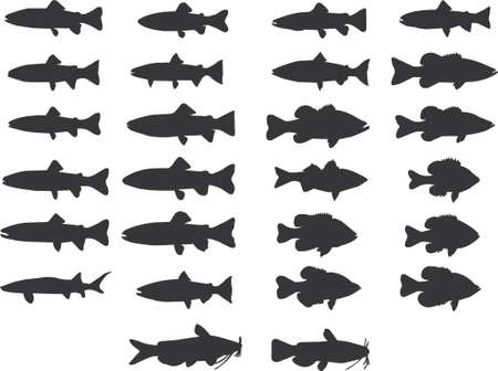 sunfish: fish silhouettes vector Illustration