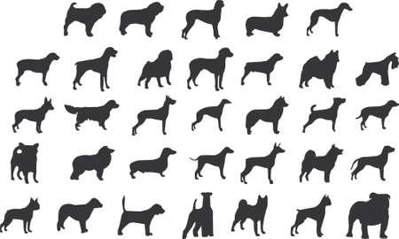 veterinarian: honden silhouetten