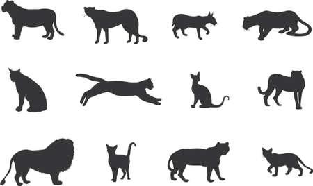jaguar: cat silhouetten Stock Illustratie