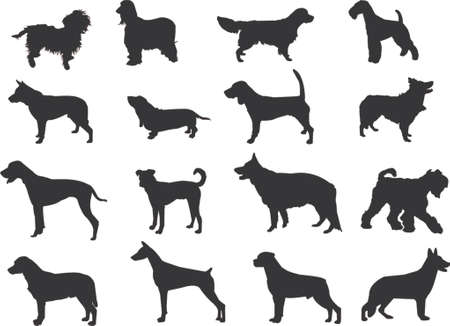 labrador retriever: dogs silhouettes Illustration