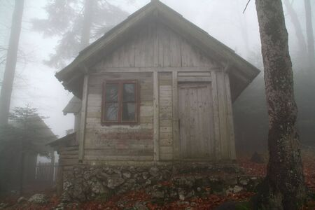 remote wooden forest cottage in the mist Imagens