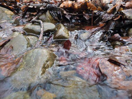 Detail of a shallow mountain stream, rippled water flows between wet rocks.