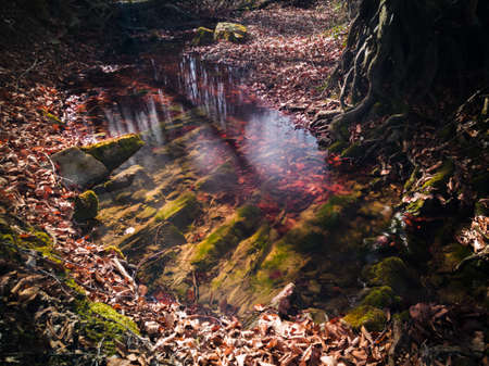 Scenic view of beautiful nature, mountain stream in forest, in spring during sunny day. Underwater rock pattern called strata in geology. Фото со стока