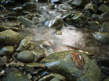 Intimate landscape detail of shallow mountain creek in forest, wet stones in river bed, wet leaf on stone and abstract clear moving water, beautiful nature