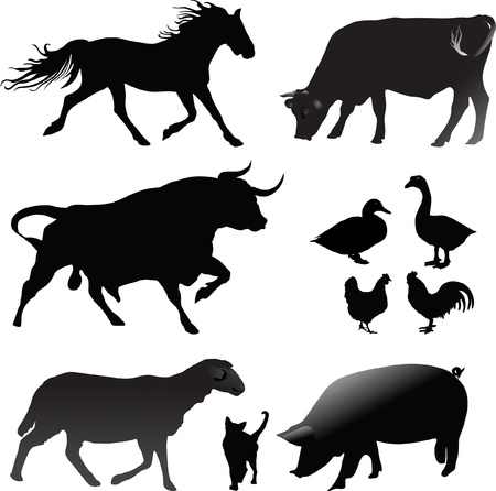 Farm animals silhouettes vector collection Vector