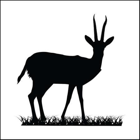 Antelope silhouette vector illustration and isolated Ilustração Vetorial