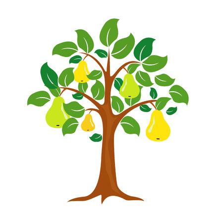 白い背景に分離されたベクトルの梨の木