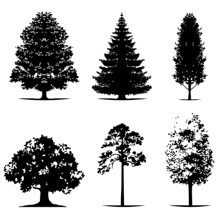 various of vector tree silhouettes in dark black color Illustration