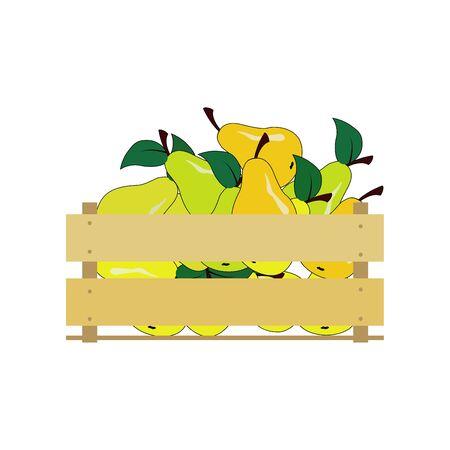 Illustration vectorielle d'une boîte en bois avec des poires jaunes. Caisse isolée sur fond blanc. Banque d'images - 79752458