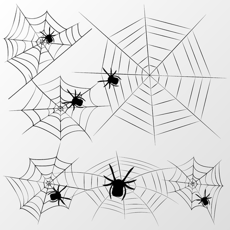 Vector spider webs and small spiders