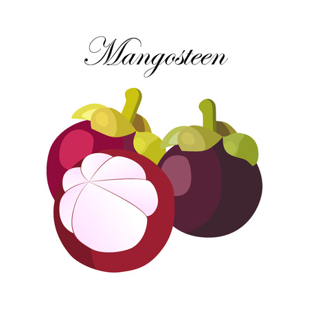 Whole mangosteen and cut half