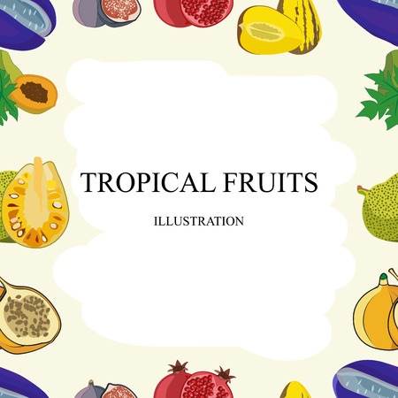 Exotic fruits seamless pattern of vector tropical mango and grapefruit or orange, carambola and dragon fruit, guava and longan, figs or rambutan, passion fruit and feijoa, durian or mangosteen