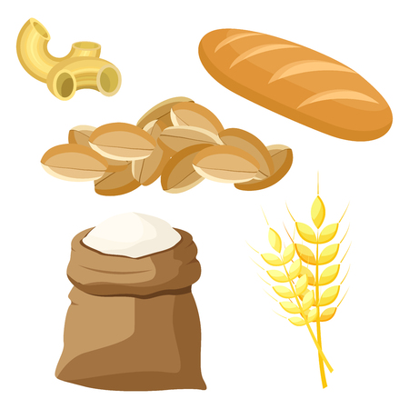Thematic set of food products from wheat and flour. Vector illustration. Illustration