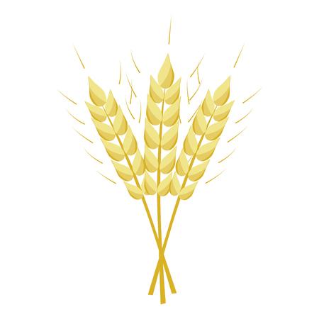 button: Ears of wheat vector illustration. Illustration
