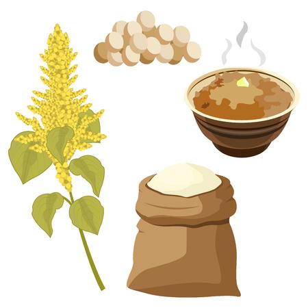 Grain amaranth flowers and leaves illustration.