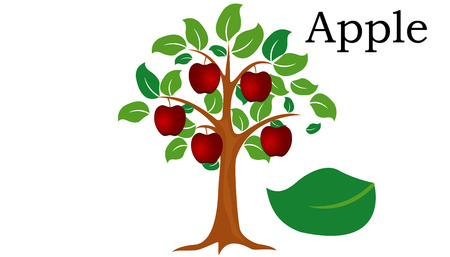 Apple  Trees vector element. vector icon green