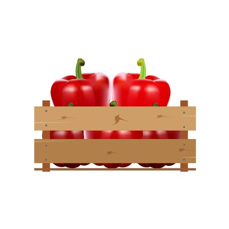Box with pepper, wooden, fruit, fresh, natural, vector.