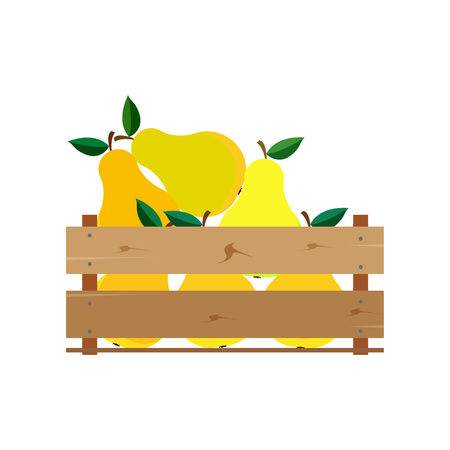 Box with pears, wooden, fruit, fresh, natural, vector.
