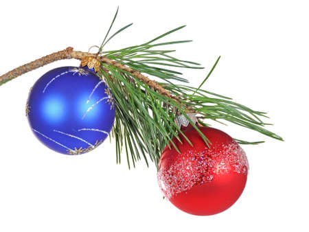 Christmas branch of a pine isolated on white background photo