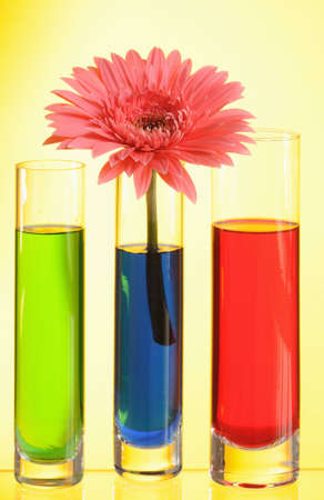Vases with multi-coloured water on yellow background photo