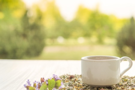 melissa: Cup of herbal tea and linden and Melissa flowers, bright wooden table, summer garden background