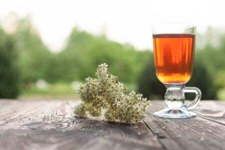 herbal background: Glass of herbal tea and linden and Melissa flowers, wooden table, summer garden background