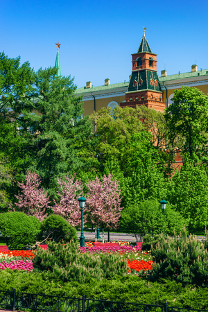 View on Moscow Red Square Kremlin tower, Kremlin red brick wall, green trees and flowers of Alexander Garden (Aleksandrovskiy Sad). Famous sightseeing of Moscow Kremlin Red Square