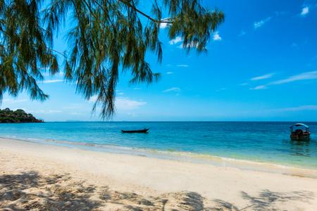 Łódź na morzu i drzewo na letniej plaży, spokojna wyspa
