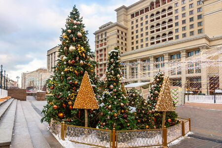 Christmas tree with lights outdoors at  city square with building  on background. New Year Celebration 写真素材