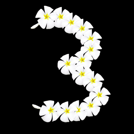 arabic number: Plumeria flower arabic number on black background Stock Photo