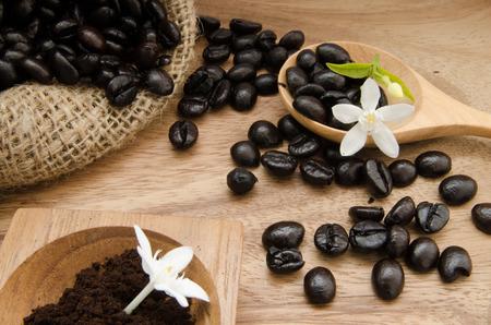 coffee bean in sack with Orange Jessamine on wooden background photo