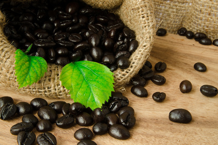coffee bean in sack with leaf  on wooden background photo