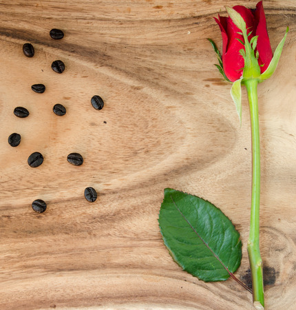 coffee roaster and red rose on cutting board photo
