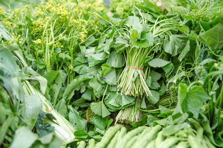 Close up of various raw green vegetables