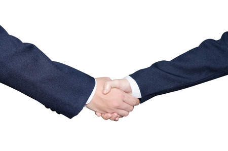handshaking: business people handshaking
