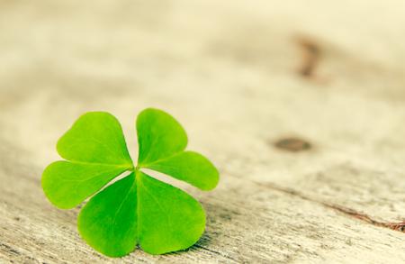 four fourleaf: vintage clover leaf Stock Photo