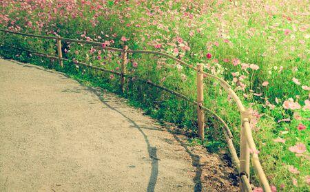 flower garden path: spring flower garden with gaden path ,process on vintage style