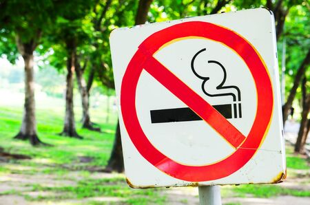 No smoking sign in the park on bright green trees and grass background. Stock Photo