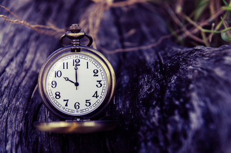 vintage pocket watch on wood log