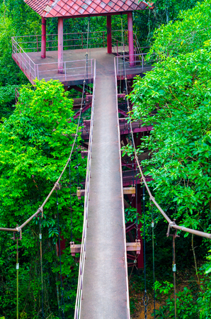 beautiful garden. The canopy walkway in Peninsular Stock Photo