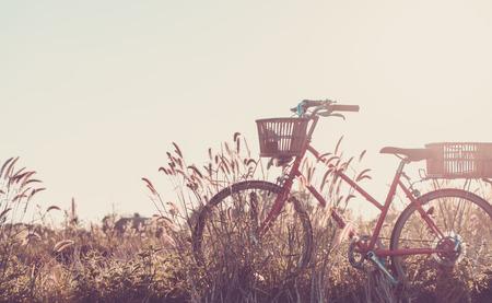 Detail of a Vintage Bicycle Travel Resting i Stok Fotoğraf