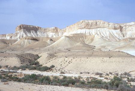 wadi: Desert Wadi in Israel