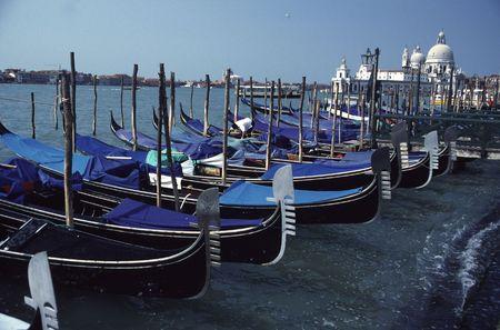 shores: Venice Gondolas at Shores of Grand Canal