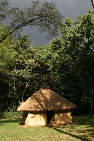 african mud hut with thatched roof in rainforest Stok Fotoğraf