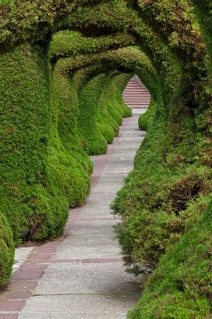 topiary: Francisco Alvarado park in Zarcero, Costa Rica, Alajuela Stock Photo