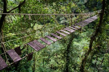 코스타리카의 열대 우림에서 오래된 현수교 스톡 콘텐츠