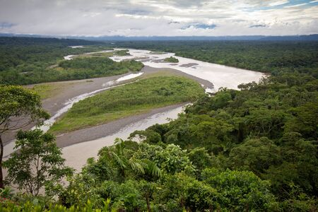 lowlands: View of the Amazonian lowlands, Eastern Ecuador