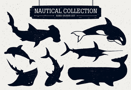 sea fishing: Hand drawn nautical collection of fish and sea inhabitants on white background. Dolphin, white shark, killer whale, cachalot, hammer-head, swordfish, and ramp.