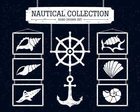 helm: Hand drawn nautical collection of shells, anchor and ship helm.