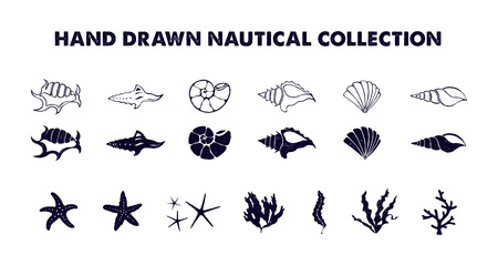 hand set: Hand drawn textured nautical vector illustrations set. Illustration